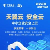 中国电信:天翼云 安全云