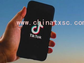 美国法院紧急叫停禁令:TikTok暂不下架