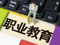 中国职业教育走到岔路口